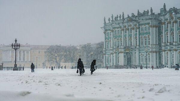 Il museo dell'Ermitazh di San Pietroburgo - Sputnik Italia