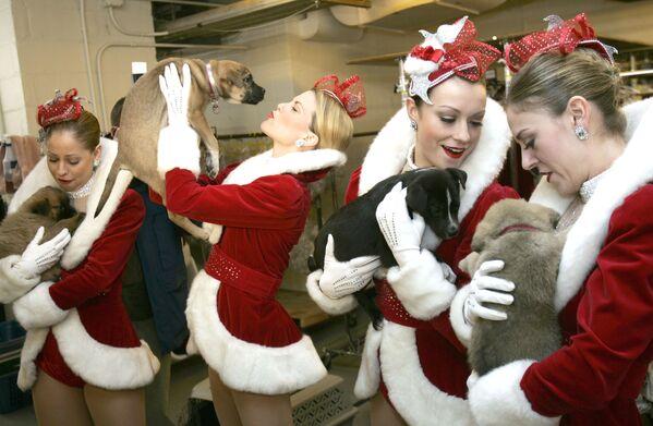 Le ballerine del complesso Rockettes, USA. - Sputnik Italia