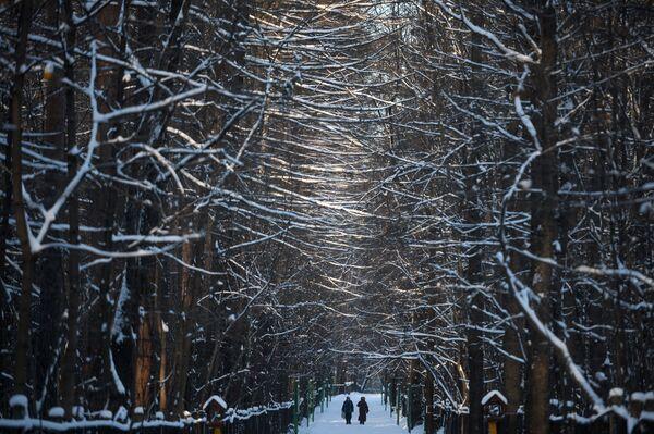 La gente va a spasso in uno dei parchi di Mosca. - 27°C - Sputnik Italia