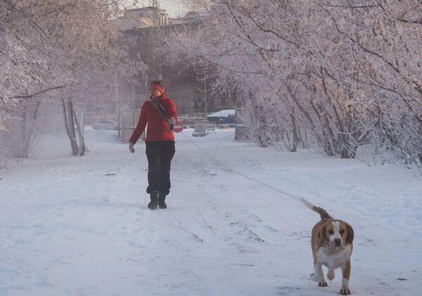 Un'abitante di Mosca va a spasso con il suo cane in una giornata gelata. - 24°C - Sputnik Italia