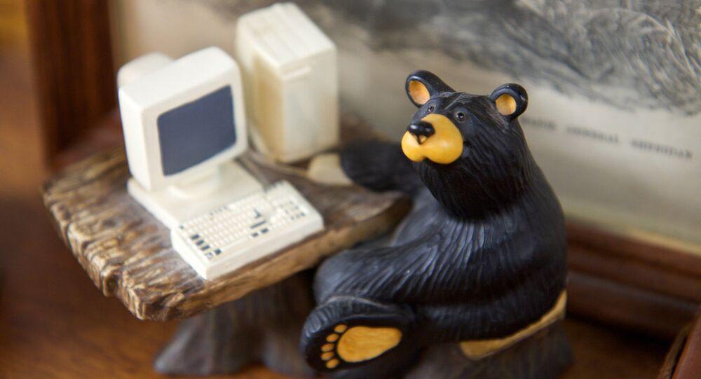 Orso - il hacker russo