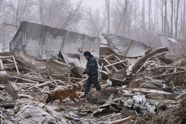 Sciagura area a Bishkek - Sputnik Italia
