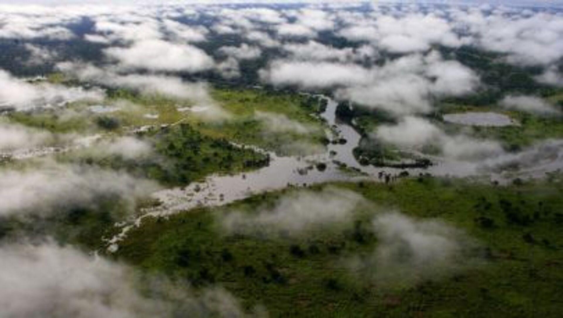 Una riserva naturale in Congo - Sputnik Italia, 1920, 19.02.2021
