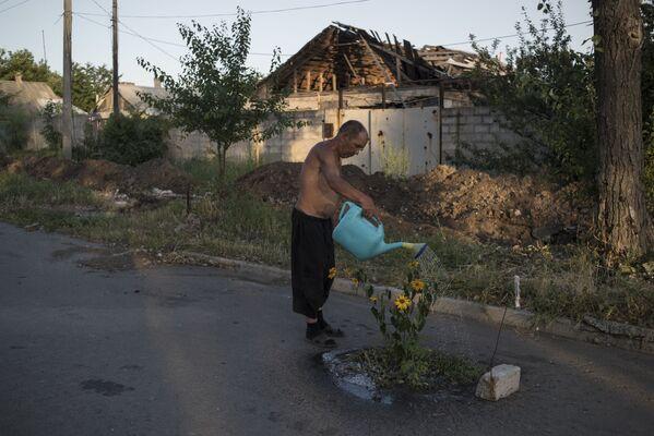 Un uomo annaffia i fiori in una delle vie della località di Veseloje nella regione di Donetsk. - Sputnik Italia