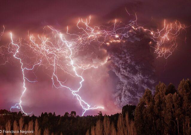 Apocalypse - Francisco Negroni (Chile)