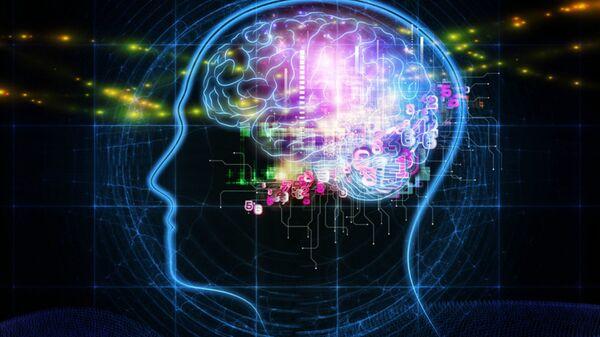 Il cervello umano - Sputnik Italia