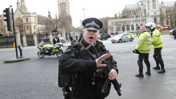 Un poliziotto armato fuori dal parlamento britannico a Londra - Sputnik Italia