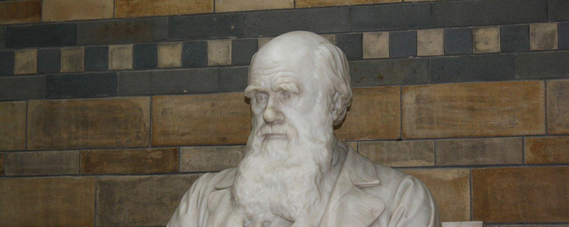Charles Robert Darwin  - Sputnik Italia, 1920, 28.11.2020