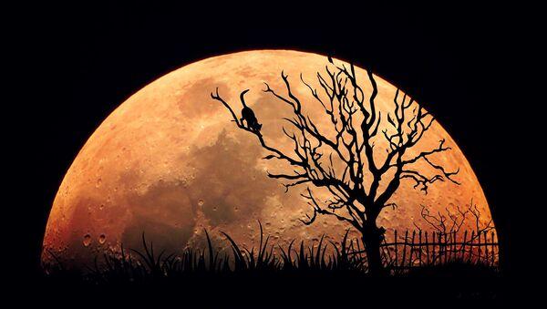 Full Moon - Sputnik Italia