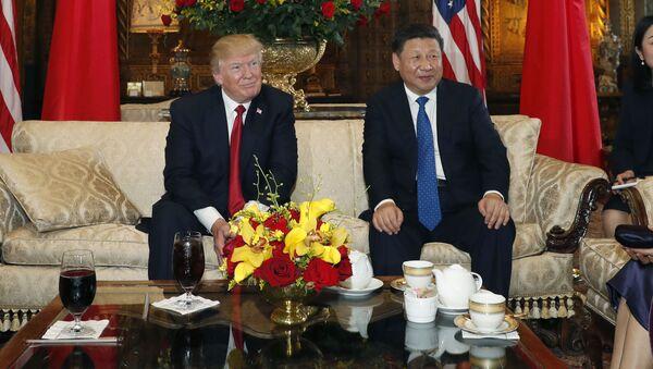 Президент США Дональд Трамп и председатель КНР Си Цзиньпин с женами на встрече в поместье президента США Дональда Трампа Мар-а-Лаго в Палм-Бич - Sputnik Italia