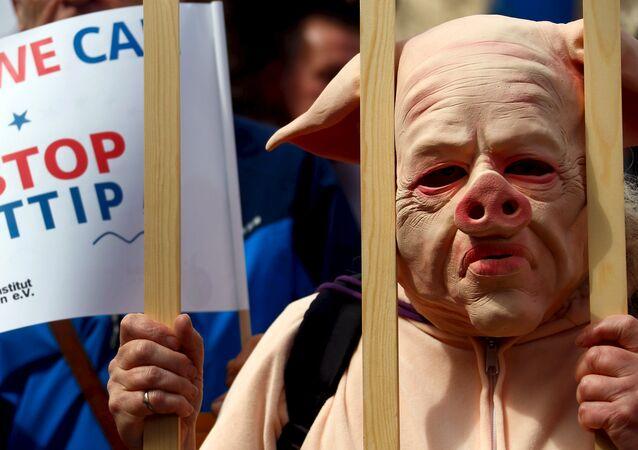 Manifestante indossa il costume di un maialino per protestare contro l'accordo TTIP