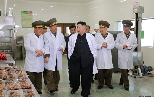 Kim Jong-un alla fabbrica 22 aprile dell'aviazione e delle truppe di difesa aerea dell'Esercito Popolare di Corea - Sputnik Italia