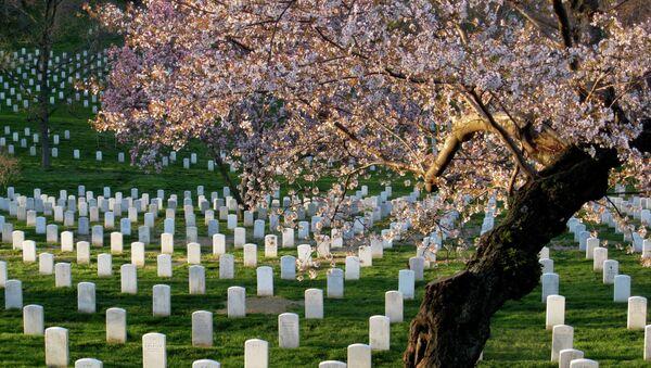 Il cimitero nazionale di Arlington, USA - Sputnik Italia