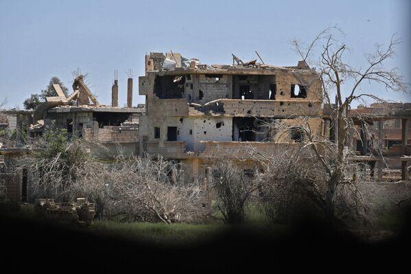 La vita di tutti i giorni nella Nuova Capitale del Daesh in Siria - Sputnik Italia