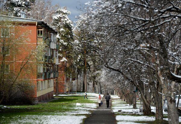 Gli abitanti dell'Akademgorodok nei pressi di Novosibirsk visti dopo una nevicata, Russia. - Sputnik Italia