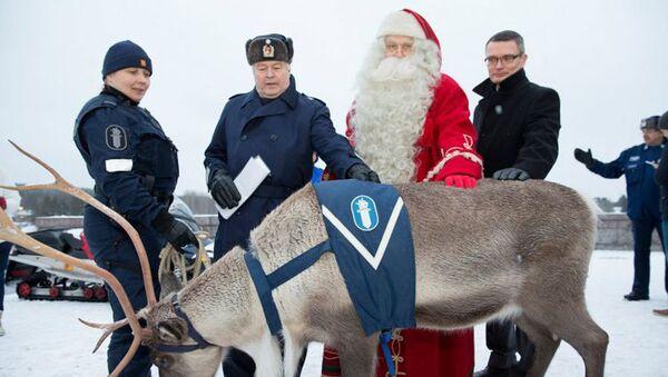 Renne al servizio della polizia della Lapponia finlandese - Sputnik Italia