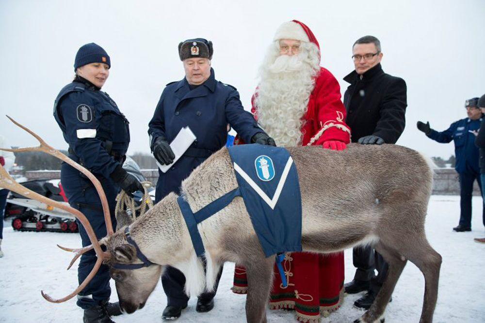 Animali al servizio della polizia.