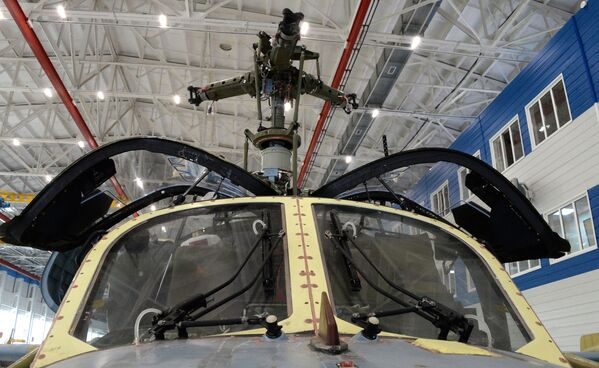 Come nasce un Alligator - Sputnik Italia