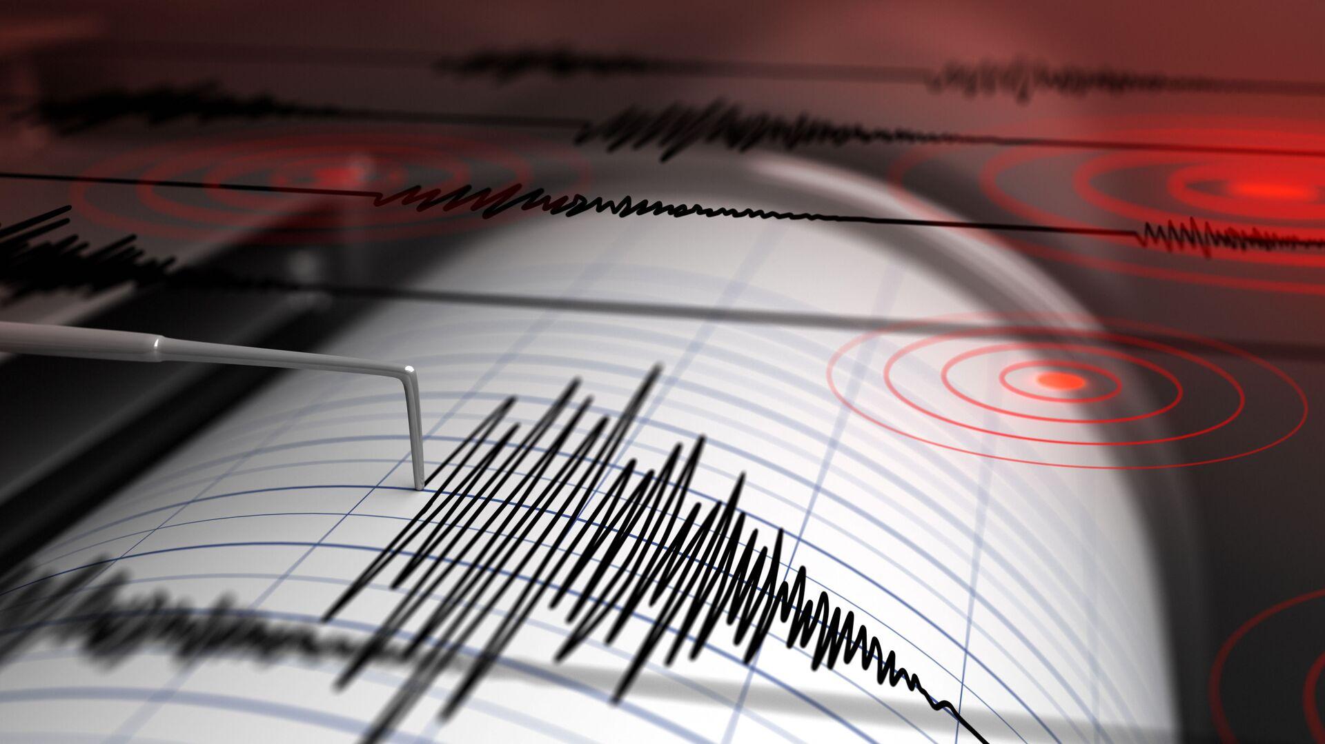Sismografo registra un terremoto - Sputnik Italia, 1920, 08.09.2021