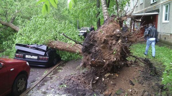 I danni dell'uragano a Mosca. - Sputnik Italia