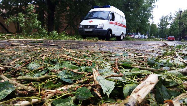 Dopo l'uragano a Mosca. - Sputnik Italia