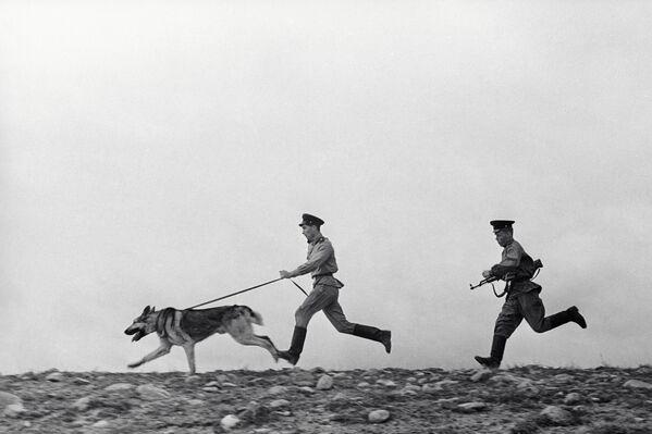 La guardia di frontiera con un cane incalza un trasgressore. - Sputnik Italia
