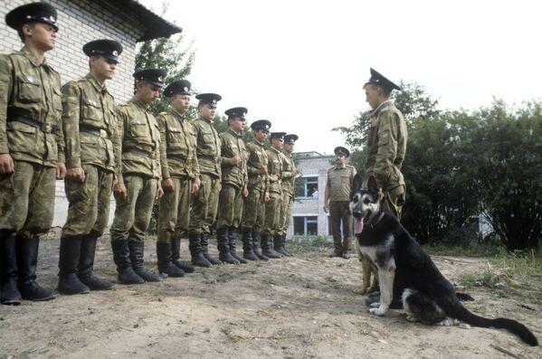 Un reparto della guardia di frontiera nella città di Sebezh. - Sputnik Italia