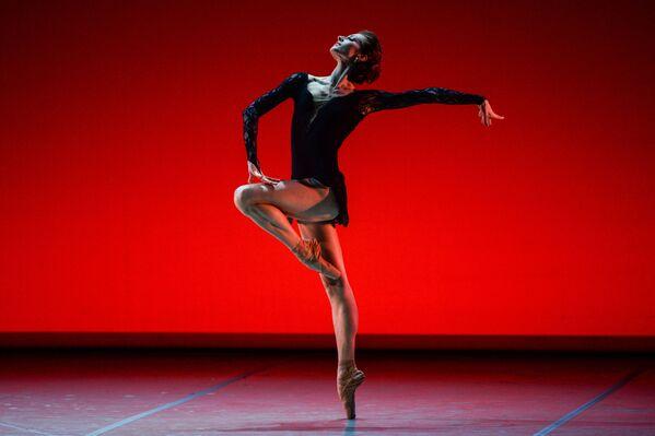 Un concerto gala del balletto russo nel teatro Mikhajlovskij nel quadro della programma culturale dello SPIEF 2017. - Sputnik Italia