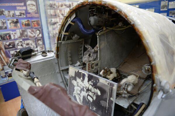 Il museo del cosmodromo di Baykonur - Sputnik Italia