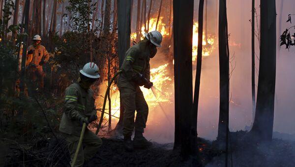 Vigili del fuoco portoghesi - Sputnik Italia