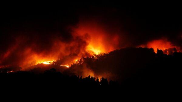 Incendio boschivo - Sputnik Italia