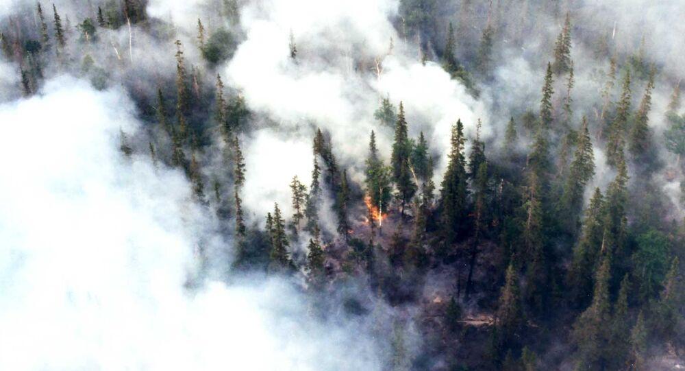 Incendio boschivo in Siberia