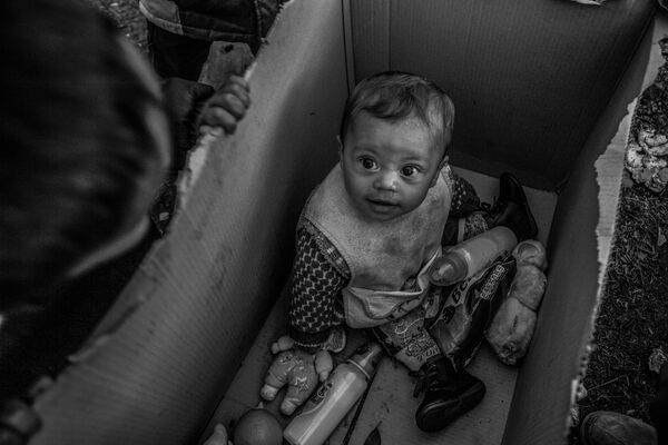 Vincitori e premiati del concorso fotografico Andrei Stenin 2017 - Sputnik Italia