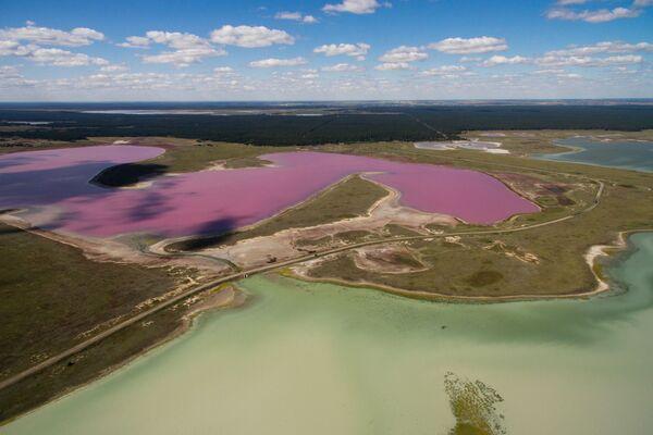 Il lago rosa della Siberia - Sputnik Italia