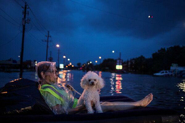 Una signora anziana e il suo barbone aspettano aiuto dopo l'uragano Harvey in Texas, USA. - Sputnik Italia