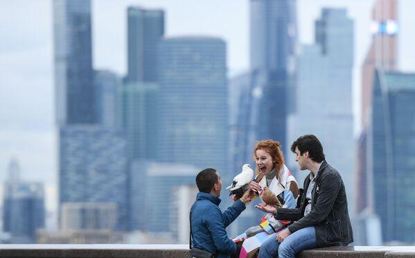 I giovani a una terrazza panoramica a Mosca. In fondo si vede il centro d'affari internazionale Moscow-City - Sputnik Italia