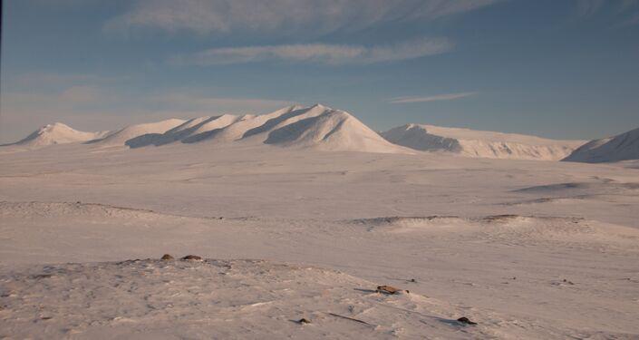 Urali polari