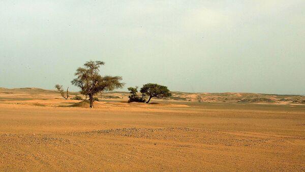 Sahara Desert - Sputnik Italia