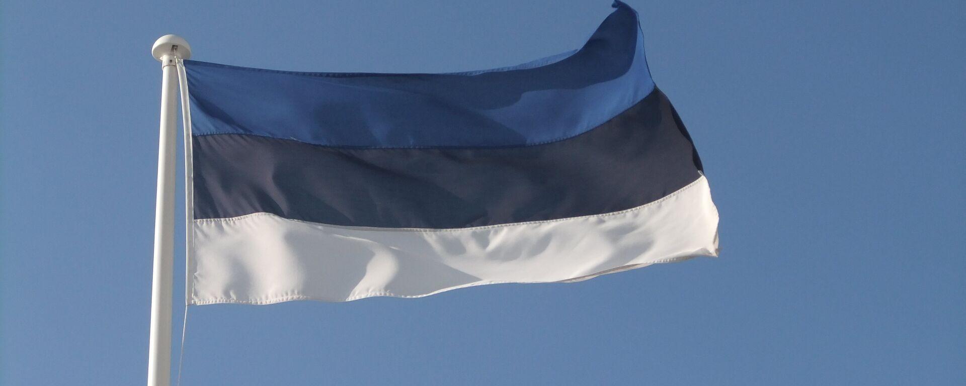 La bandiera estone - Sputnik Italia, 1920, 07.07.2021