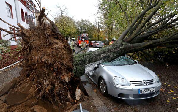 Le conseguenze dell'uragano Herwart a Berlino, Germania. - Sputnik Italia