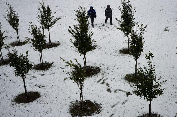 Neve a Rosa-Khutor a Sochi, Russia. - Sputnik Italia