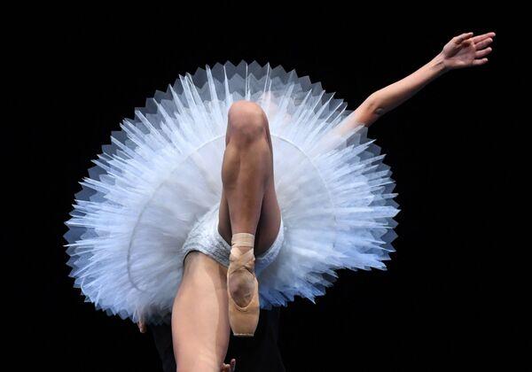 Il balletto del Teatro dell'Opera di Dresda durante le prove prima dell'esibizione a New York. - Sputnik Italia