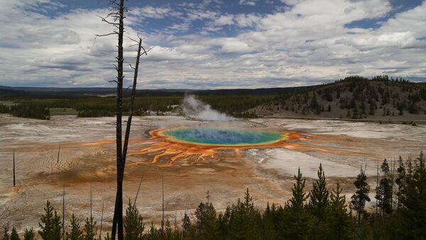 Источник в Национальном парке Йеллоустоун, США - Sputnik Italia