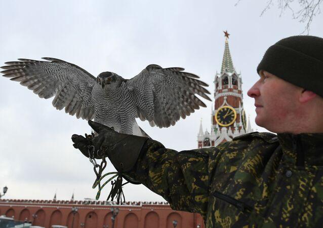 I falchi del Cremlino