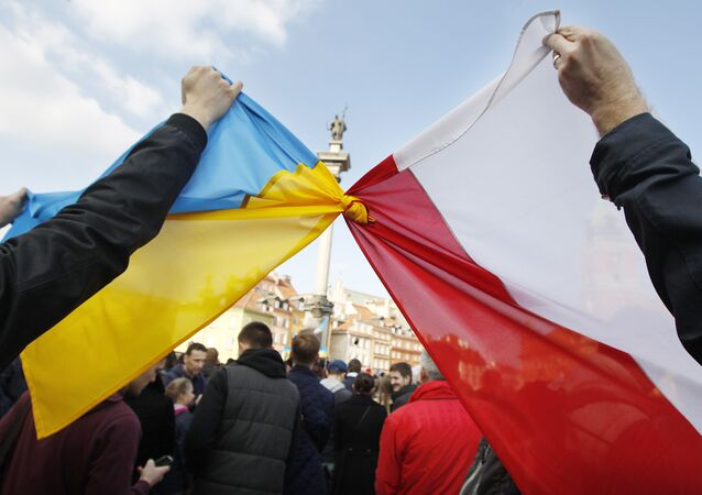 Bandiere di Polonia e Ucraina