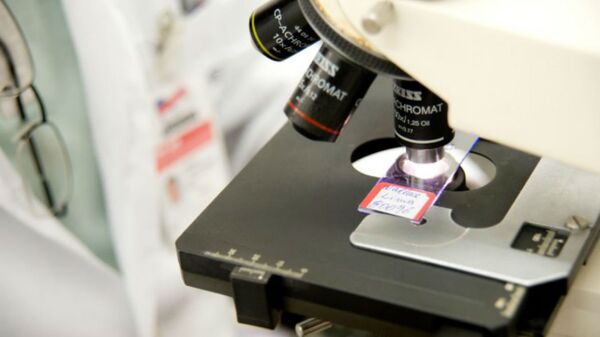 Microscopio elettronico - Sputnik Italia