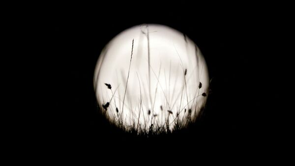 La bianca Luna - Sputnik Italia