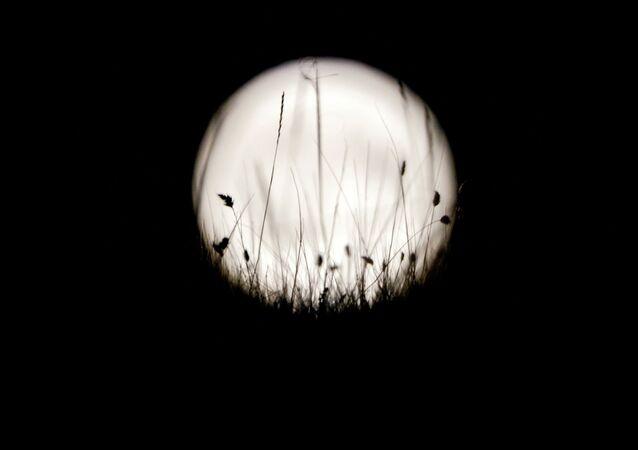 La bianca Luna