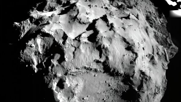 The picture of a surface of a comet of Churyumov-Gerasimenko taken by the Phil module when landing. November 12, 2014 - Sputnik Italia
