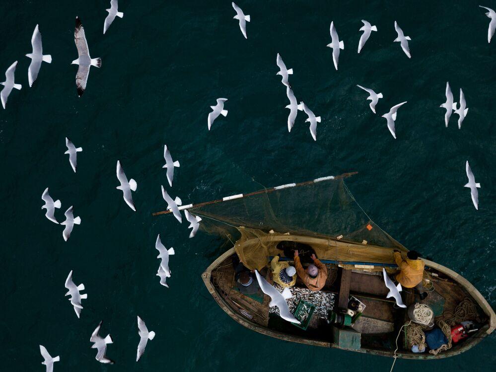 I pescatori visti durante la pesca nel Mar Nero a Sebastopoli.